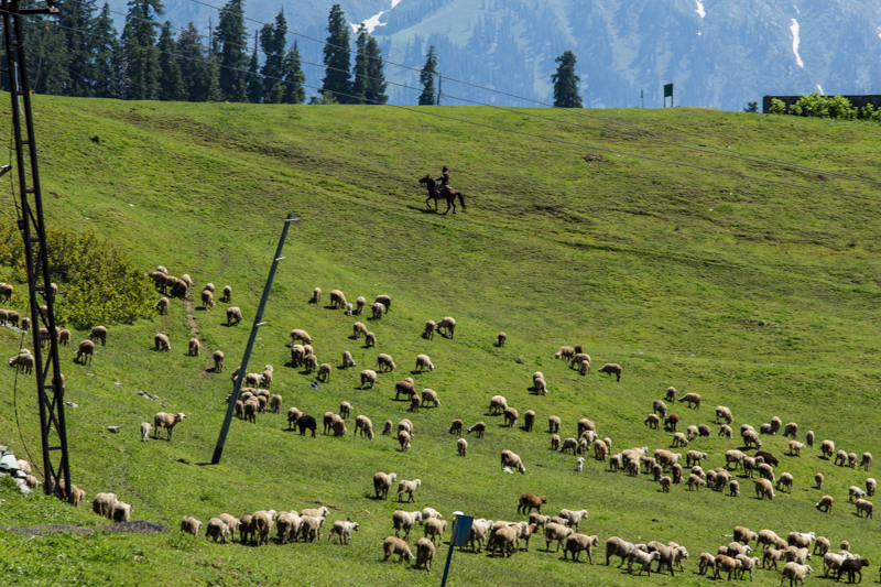 Kashmir-2-2